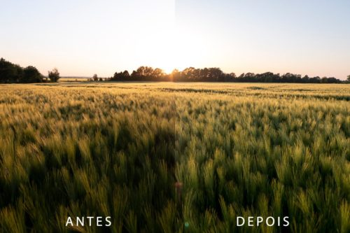 Antes e depois - Presets Lightroom - Nature